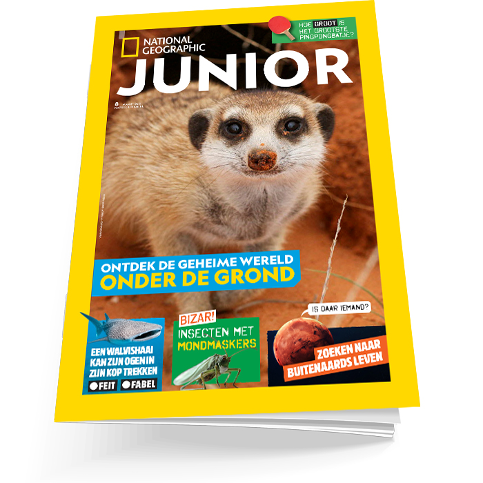 National Geographic Junior editie 8
