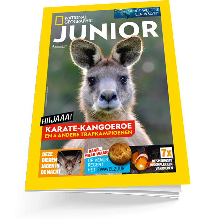 Nat geo junior editie 4 2020-2021