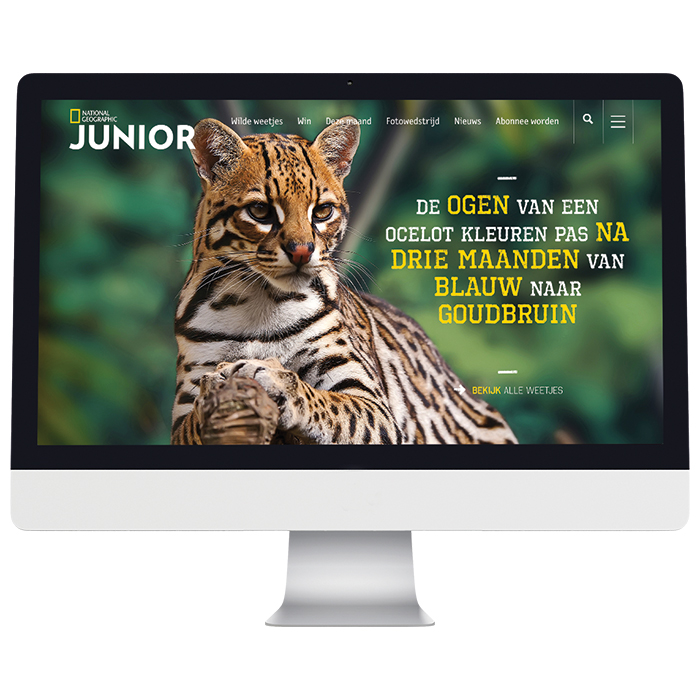 Nat geo junior website